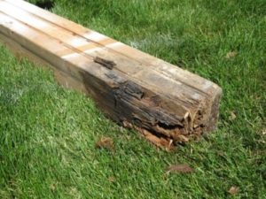 treated deck lumber rotting
