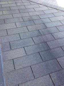 What Causes Asphalt Shingles to Stain