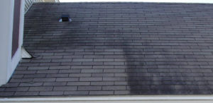 Removing Dark Stains from Your Roof